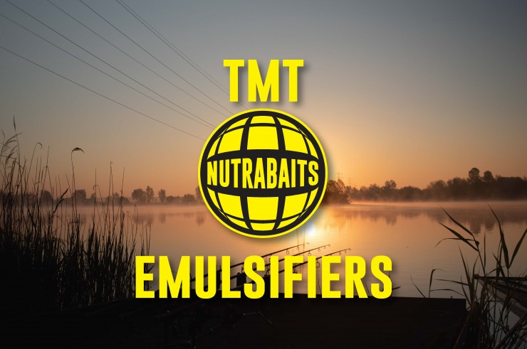 Two Minute Tuesday - Emulsifiers